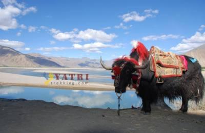 Trekking de Ganden à Samye
